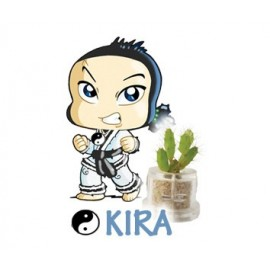 Kira - Krachten
