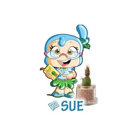 Sue - Groei