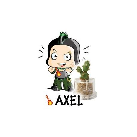 Axel - True Grit
