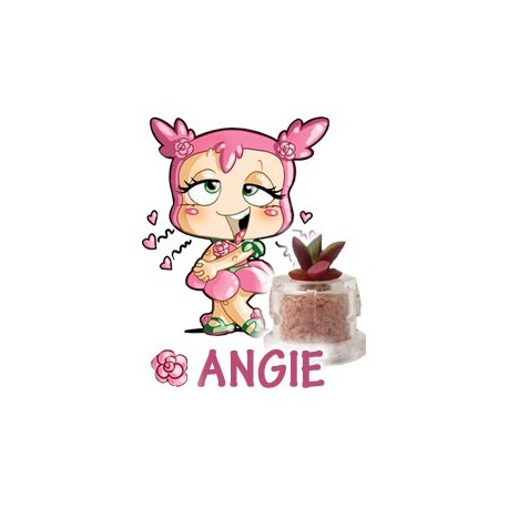 Angie - Love