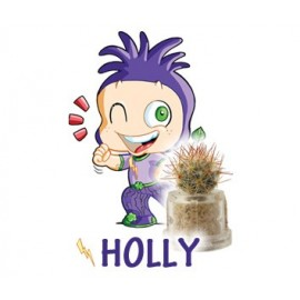 Holly - Succes