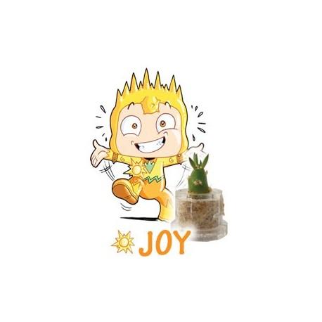 Joy - Geluk